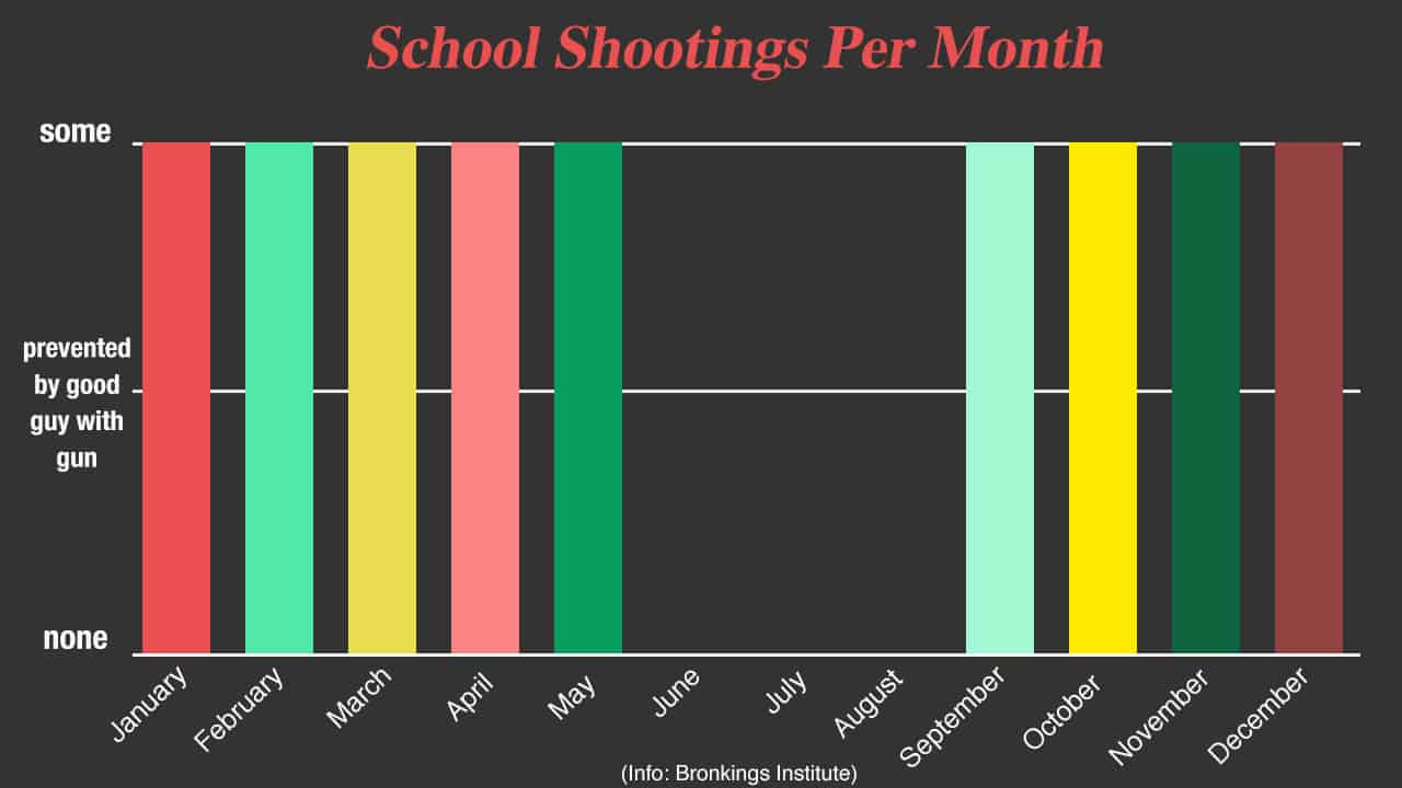 School Shootings Hit Record Low This Summer Despite Unchanged Gun Laws