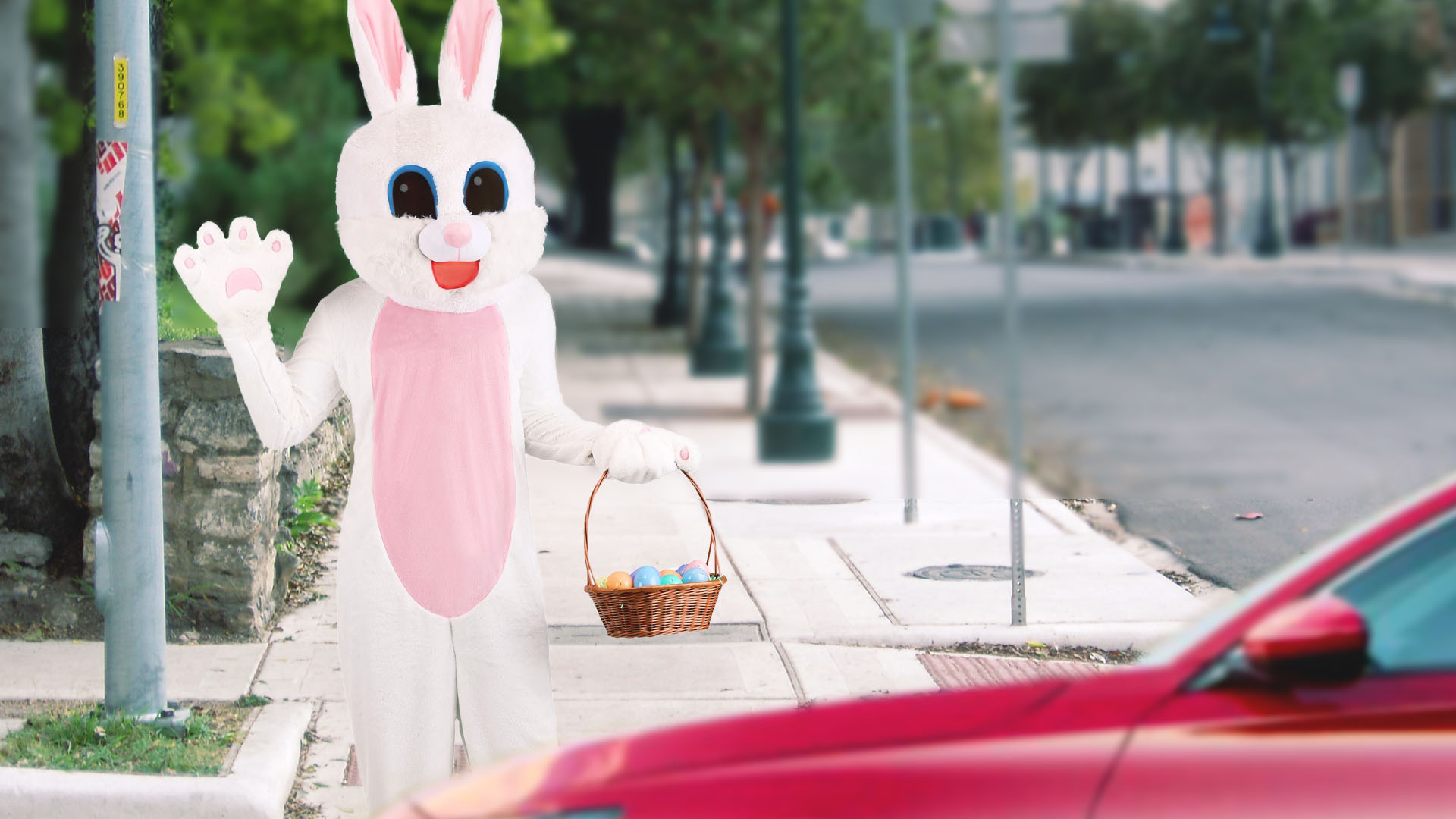 Regretful Easter Bunny Announces Eggs Will Be Limited To Curbside Pick-Up