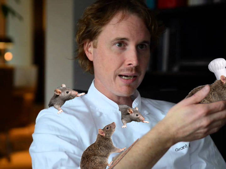 Real-Life 'Ratatouille'? Alinea Chef Grant Achatz Just Revealed The Rats In His Sleeves That Do All Of The Cooking