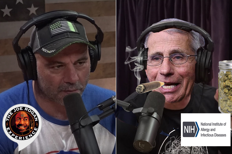 Anthony Fauci Smokes Weed, Tells-All In Joe Rogan Podcast