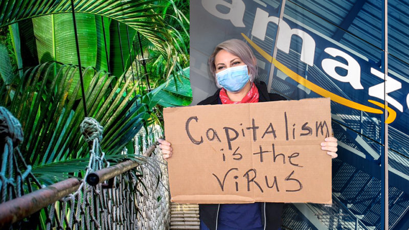 Activist Simultaneously Committed To Saving Amazon, Destroying Amazon