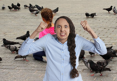 Are You Really This Mad About Your Neighborhood Pigeons Or Are You Just Hungry? [QUIZ]
