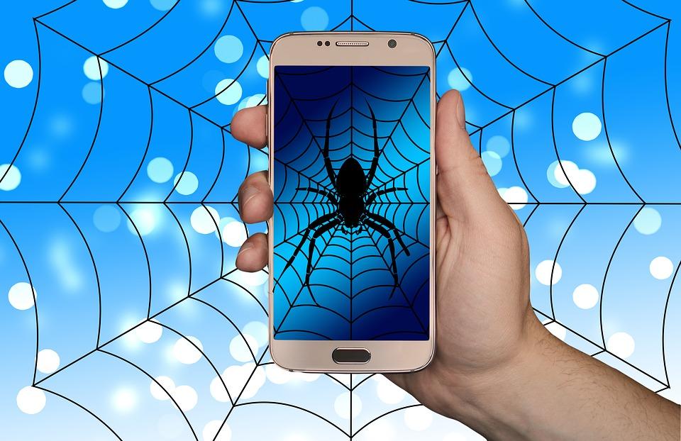 Spider Sells Eggs On Dark Web Web